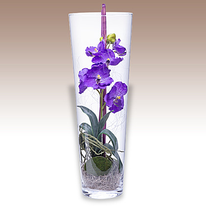 Kunstblume orchidee die k nstlichen orchideen - Orchideen deko ...