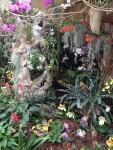 Orchideenverein Ausstellung